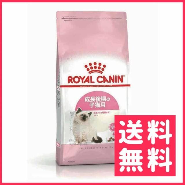 ロイヤルカナン キトン 子猫用 2kg【送料無料】