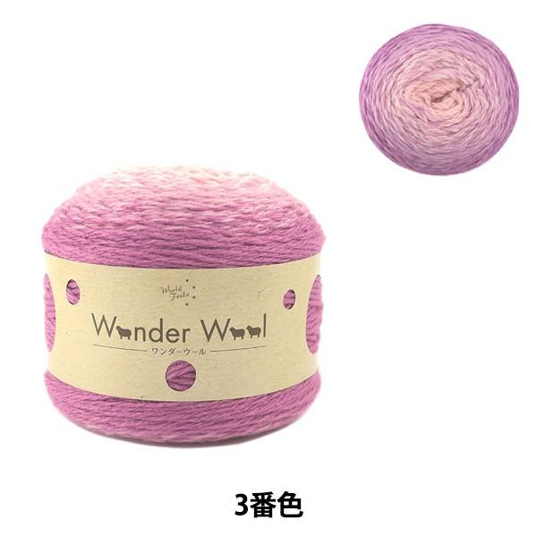 秋冬毛糸 『ワンダーウール 3番色 紫白ミックス』...