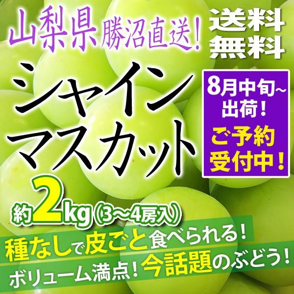 シャインマスカット ぶどう 葡萄 約2kg 3〜4房 山...