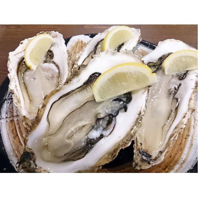 天然 岩ガキ 生食用 送料無料 1kg(5〜7個) 岩牡...