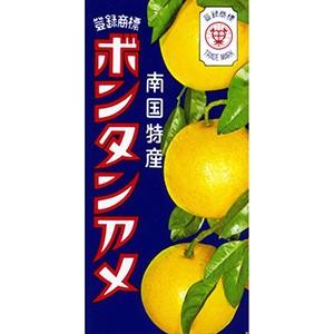 セイカ食品 ボンタンアメ 14粒×10入