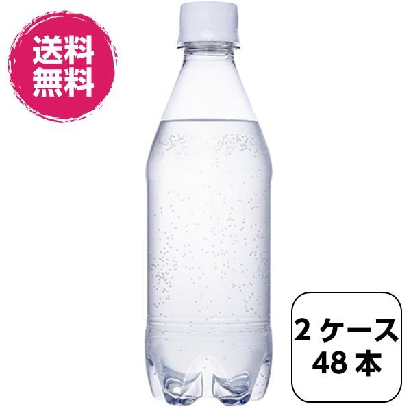 【全国送料無料】2ケース48本 カナダドライ ザ タ...