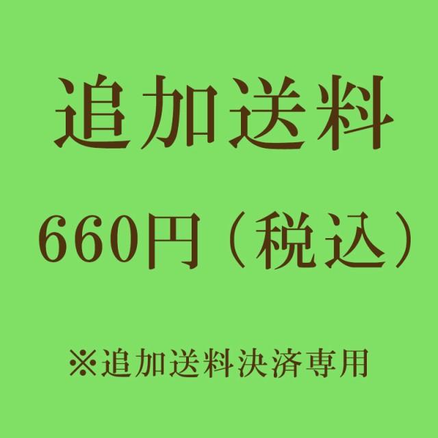 追加送料決済 600円(税抜)