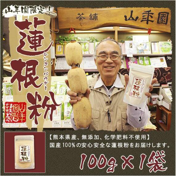 【国産100%】【無添加】れんこんパウダー 蓮根粉 ...