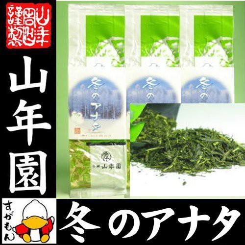 お茶 日本茶 冬のアナタ 100g×3袋セット 送料無...