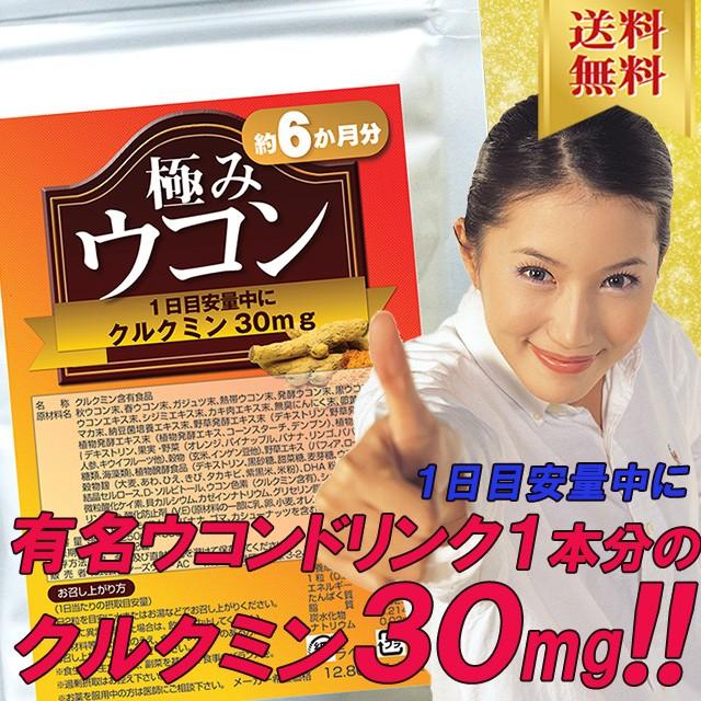 【送料無料】極みウコン360粒(約6か月分)有名ウコ...