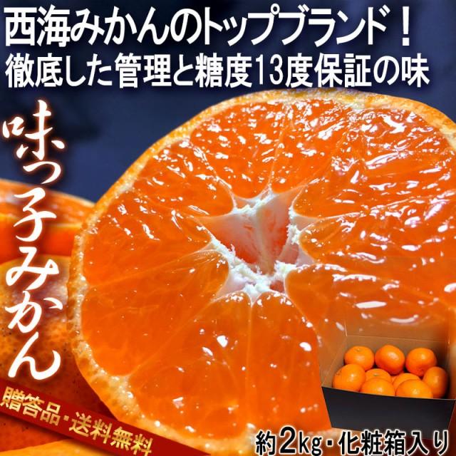 味っ子 西海みかん 約2kg 長崎県産 贈答規格 JAな...