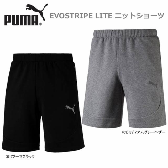 Men's Clothing Grey Puma Evostripe Mens Training Shorts