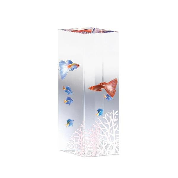 トーエー クリスタルファンタジー 熱帯魚 CF-I-F