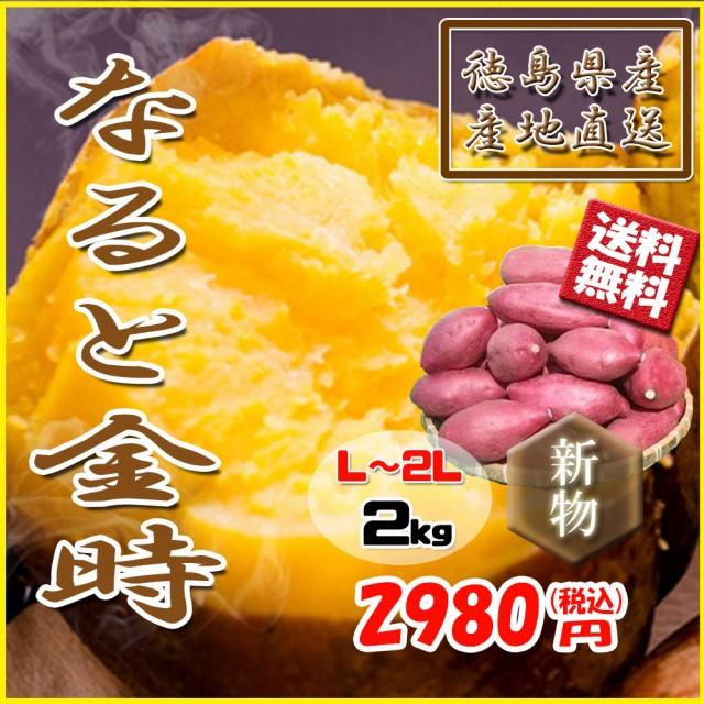 鳴門金時 徳島県産 なると金時 さつまいも 金時芋 2kg 新物 送料無料