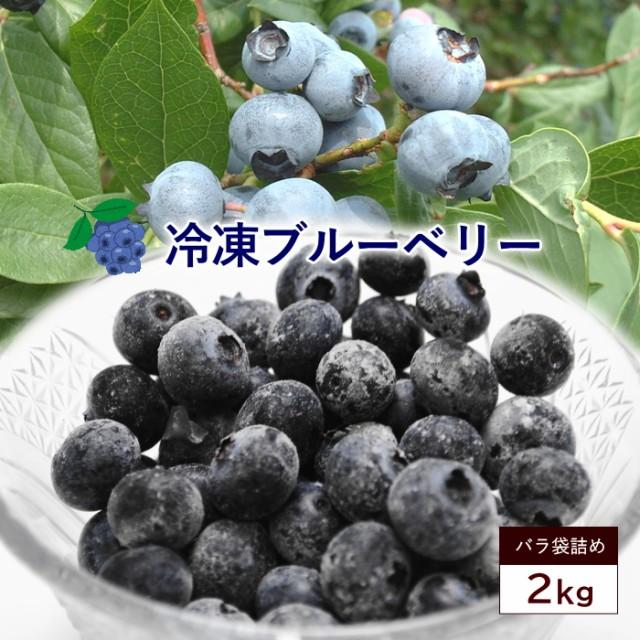 送料無料 冷凍ブルーベリー 約2kg サイズ混合 ブ...