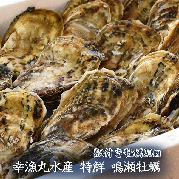 幸漁丸水産 特鮮 鳴瀬牡蠣 殻付き牡蠣20個 生牡蠣...