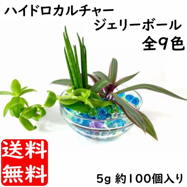 ぷよぷよボール 5g入 約100粒 ハイドロカルチャー...