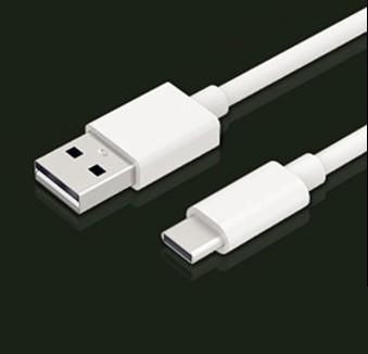 [送料無料/ポイント利用に最適]【USB Type C 充電...