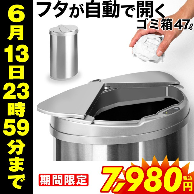 ゴミ箱 47リットル ゴミ箱 ふた付き ゴミ箱 大型 ...