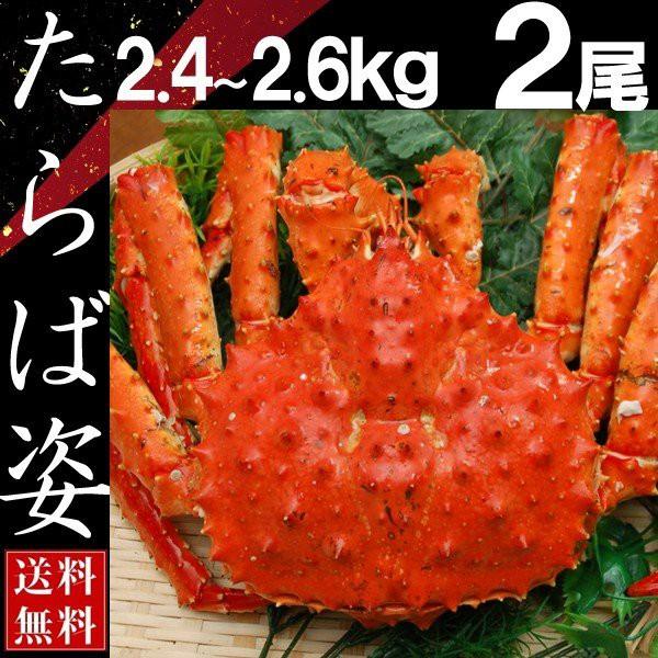 タラバガニ 姿 たらば蟹 脚 足 ボイル 2.4kg〜2.6kg 2尾 冷凍 北海道加工 送料無料 かに ギフト プレゼント お買い得