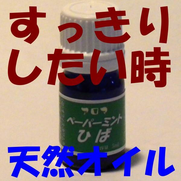 【送料無料】 アロマヒバ◎ペーパーミントひば◎ ...