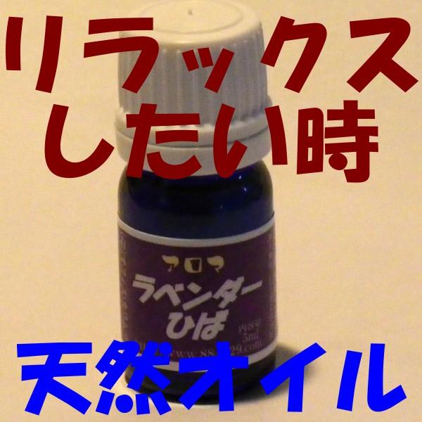 【送料無料】 アロマヒバ◎ラベンダーひば◎ 【青...