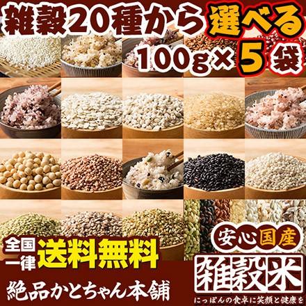 【20種から選べる5品】雑穀各種 100g×5袋 5種...