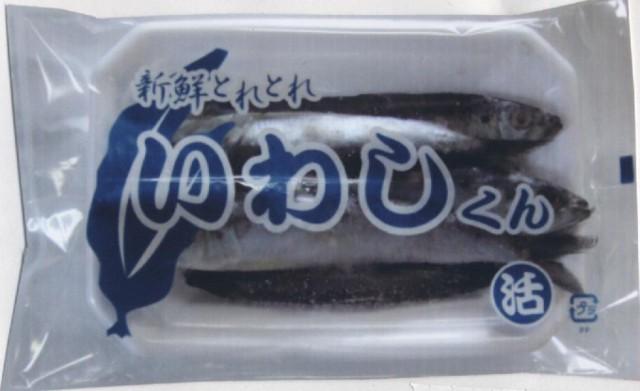 大物太刀魚に【新鮮とれとれ】いわしくん [冷凍...