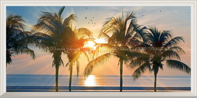 絵画風 壁紙ポスター  ハワイ オアフ島の夕陽とパ...