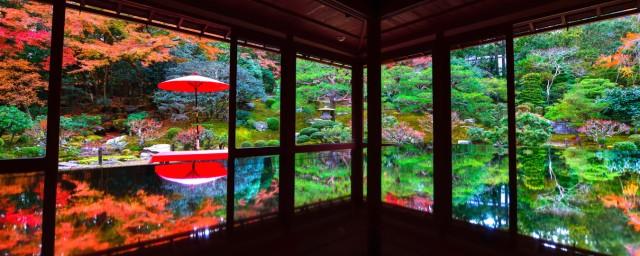 絵画風 壁紙ポスター  -地球の撮り方- 滋賀の紅葉...