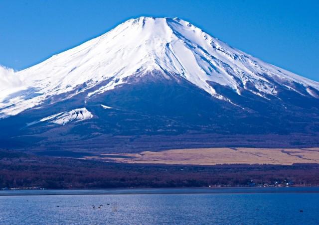 絵画風 壁紙ポスター 冠雪の富士山と山中湖 白富...