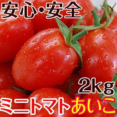 ミニトマトあいこ(アイコ)2kg【送料無料】和歌山のエコファーマーが減農薬・減化学肥料で作るこだわりの果肉・栄養たっぷりのトマト