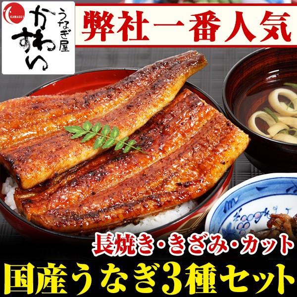 特大国産うなぎのお試し3種セット【送料無料】【...