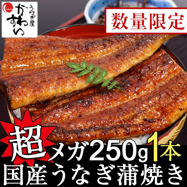 丑の日 国産 超メガサイズうなぎ蒲焼き 250g×1本...
