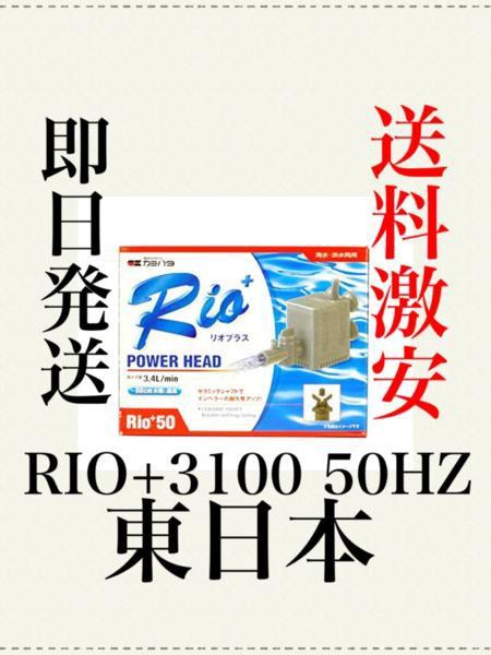 RIO+3100 50hz 東日本 カミハタ 水槽ポンプ リオ...