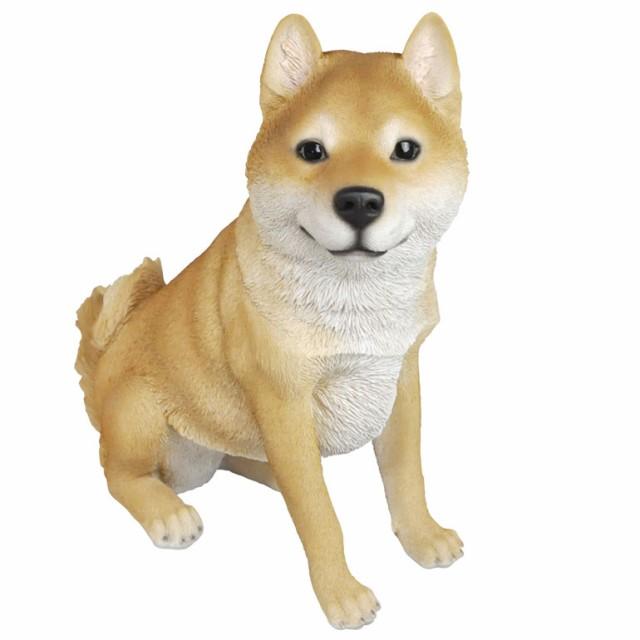 デカイ レジン製イヌ 柴犬L☆代引き不可・沖縄、...