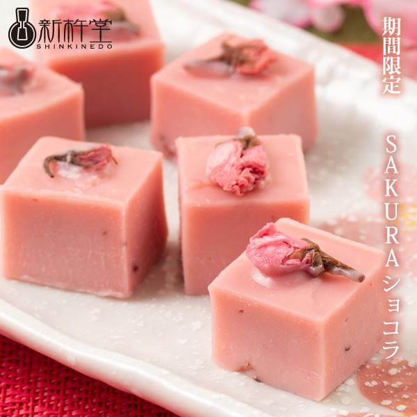 SAKURAショコラ 6個 新杵堂 桜 サクラ さくら スイーツ チョコレート ギフト プレゼント 贈り物 お土産