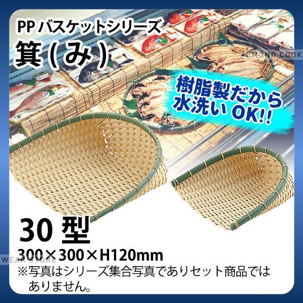 PP箕 DP-300-BB(30型)_箕ざる 箕ザル プラスチッ...