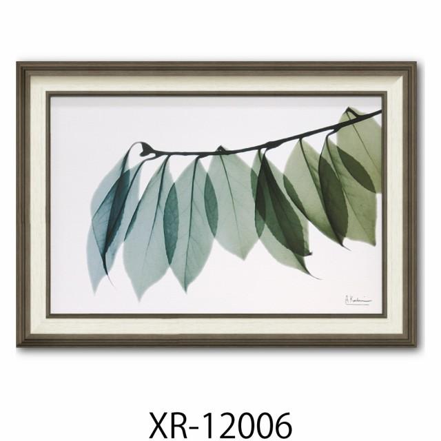 絵画 インテリア 壁掛け XR-12006 X-RAY 花柄 ア...