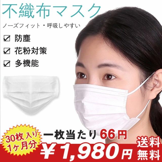 マスク 不織布マスク ホワイト 30枚入 三層構造 花粉症対策 男女兼用 ホコリ 対策 使い捨て 立体 プリーツタイプ ノーズワ