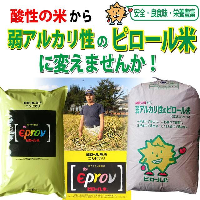 【精米】ピロール米 福井産コシヒカリ 5kg 29...