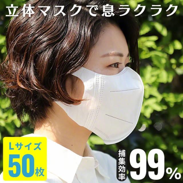不織布 マスク 50枚 Lサイズ 3D 立体構造 メイク...