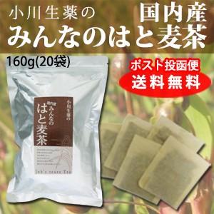 はとむぎ茶 国産 はと麦茶 8g×20袋 DM便