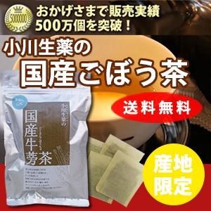 国産 ごぼう茶 1.5g×30袋 DM便送料無料