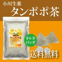 たんぽぽ茶〈タンポポ茶〉 2g×36袋 テトラバッグ...