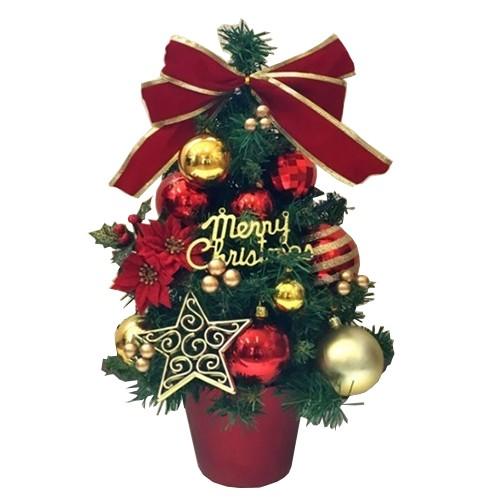 【クリスマス】 ビックツリー Merry Christmas...