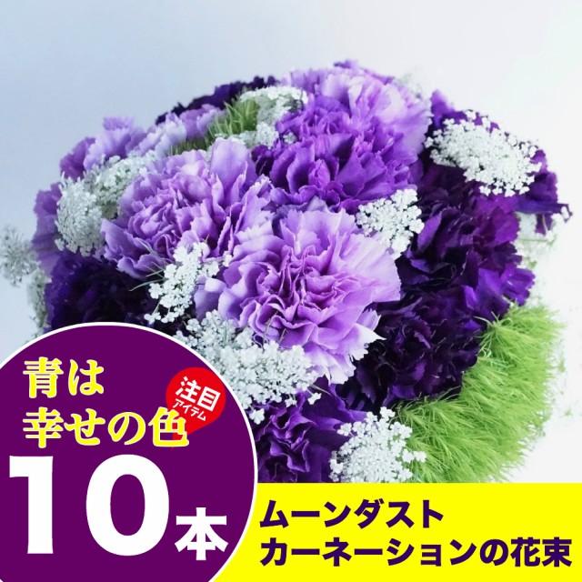 送料無料 ムーンダストカーネーション10本の花束 ...