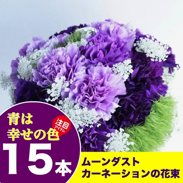 送料無料 ムーンダストカーネーション15本の花束 ...
