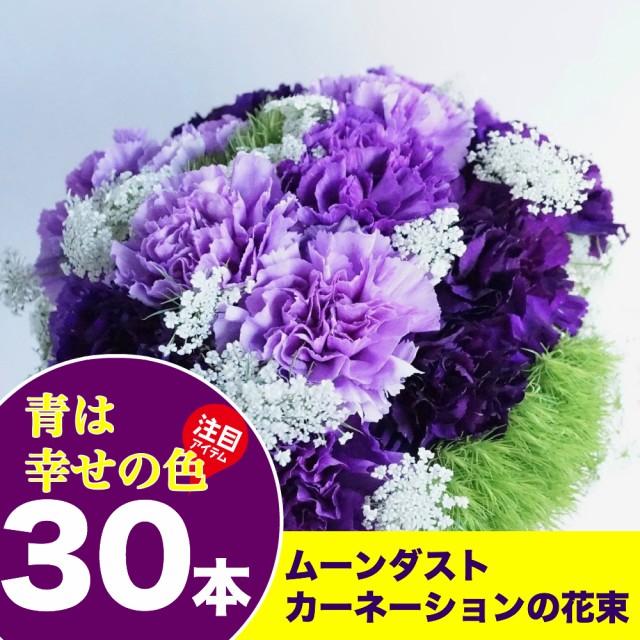 送料無料 ムーンダストカーネーション30本の花束 ...