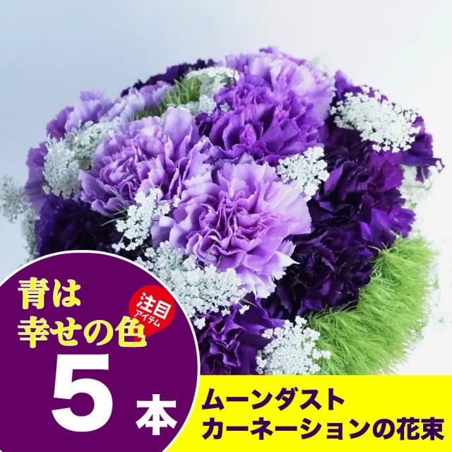 送料無料 ムーンダストカーネーション5本の花束 ...