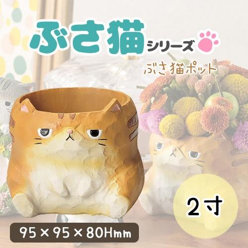 ぶさ猫ポット 4024 GREEN HOUSE