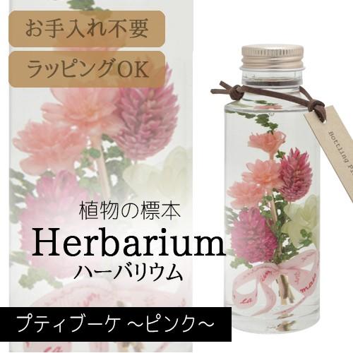 松村工芸 ハーバリウム BP-18101 プティブーケ 2....
