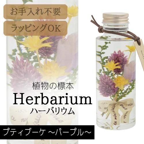 松村工芸 ハーバリウム BP-18101 プティブーケ 7....