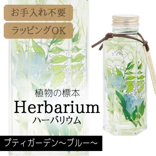 松村工芸 ハーバリウム BP-18102 プティガーデン ...